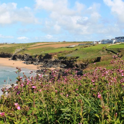 Crantock Beach, a dog friendly beach in Cornwall