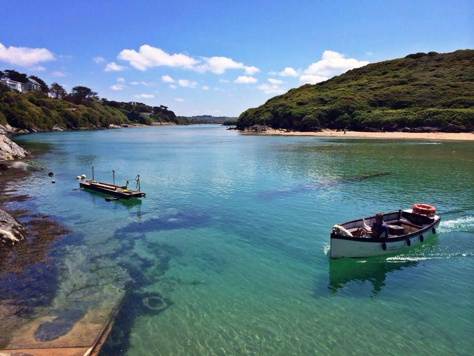 Best Dog Beaches In Cornwall