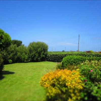 Sandylands garden, a dog friendly cottage in Cornwall