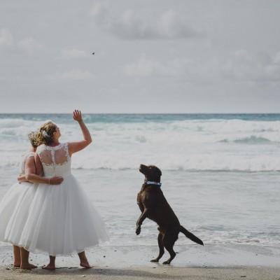Dog friendly weddings at Lusty Glaze Beach in Newquay, Cornwall