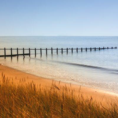 Dawlish Warren, a dog friendly beach in Devon | Pawfect Stays