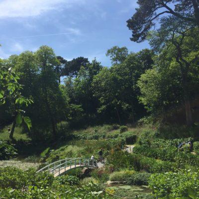 Trebah Garden, Conrwall