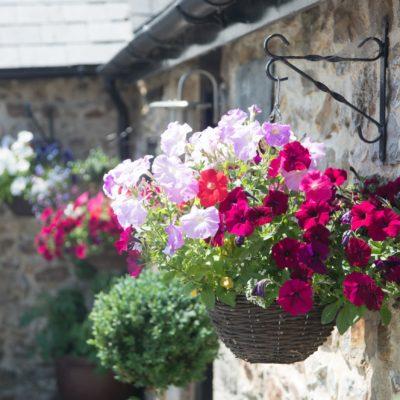 Cranberries Hideaway - luxury country retreat for weddings in Devon